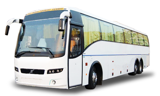 About Tours And Travels Company